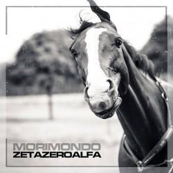 DLP Zetazeroalfa – Morimondo